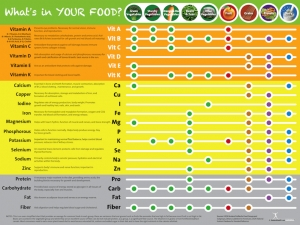 Nutrient Poster