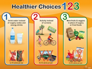 Healthful Choices Banner