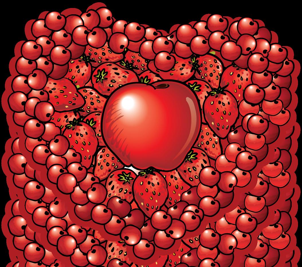 Fruit heart clipart