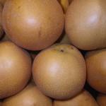 Asian pear 5