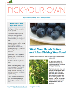 Pick Your Own Produce Guide