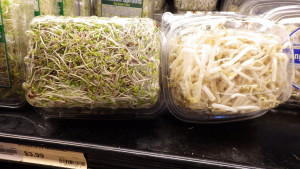 Sprouts -- Friend or Foe?