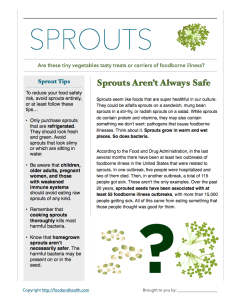 Sprouts Handout