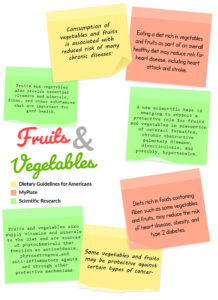 Fruit and Vegetable Handout